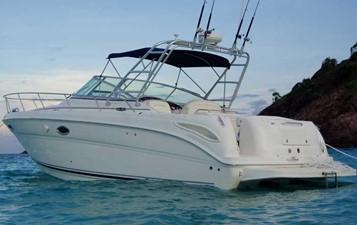 Sea Ray 315 Amberjack 0