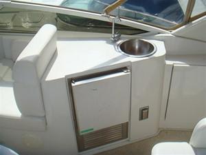 Sea Fan 5