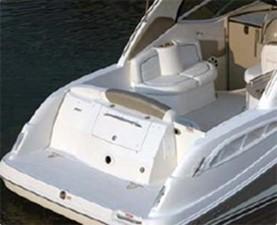 Sea Ray 290 Amberjack 2