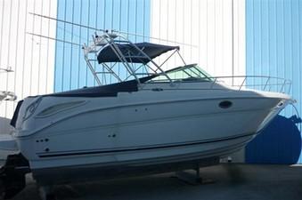 Sea Ray 290 Amberjack 7