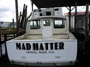 Mad Hatter 246946