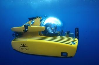 Triton 1650/3LP 248311
