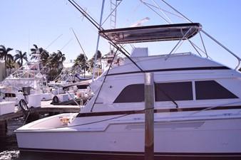Profile at Dock