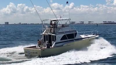 NEW LATITUDE 2 NEW LATITUDE 1974 BERTRAM  Sport Fisherman Yacht MLS #254678 2