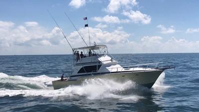 NEW LATITUDE 3 NEW LATITUDE 1974 BERTRAM  Sport Fisherman Yacht MLS #254678 3