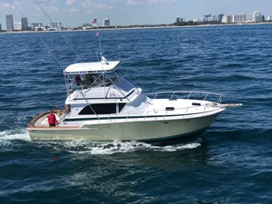 NEW LATITUDE 5 NEW LATITUDE 1974 BERTRAM  Sport Fisherman Yacht MLS #254678 5