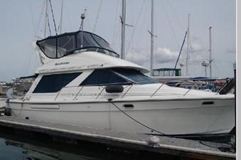 Sea Horse 255434