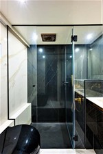 VIP Stateroom Head and Shower