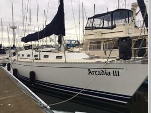 Arcadia III 15