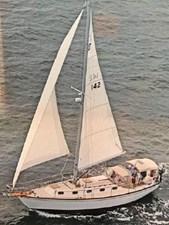 Sea Angel 0 1