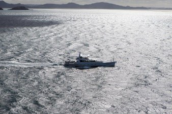 Iceberg 29