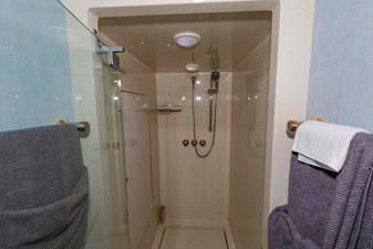 Large Master Shower
