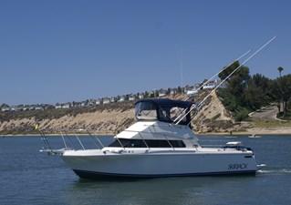 Port Side Skipjack