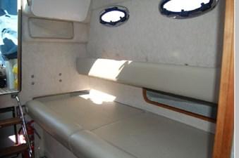 38 2011 Protector Turanga 38 18 19