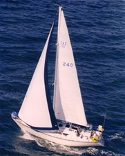 TAZ Sailing 2