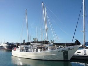 Conch Pearl 262320