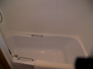 Master Ensuite Tub & Shower