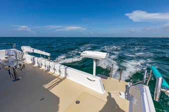 Aft Deck Davit and Cleaning Station