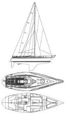 BLUZZ  34 35