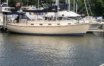 Sea Lion 266179