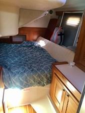 CHEEKY MONKEY 42 Aft Cabin