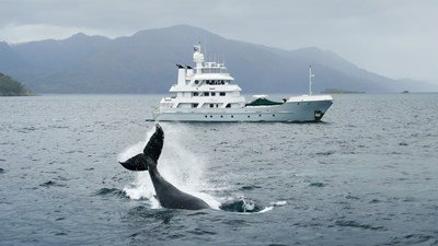 141' Expedition Yacht MARCATO w whale