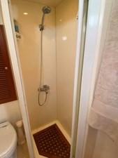 233 Master Head Shower