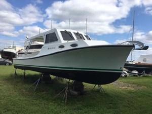 Swan 269196