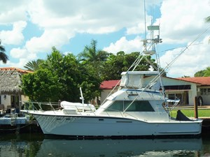 SEA HAWK 40 Alternate Profile