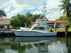 SEA HAWK 41 Alternate Profile