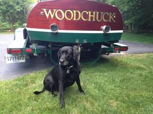 Woodchuck 33 Transom
