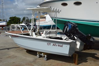 All's Well 28 Custom 14' 2014 Livingston Fiberglass Catamaran Tender with T-Top