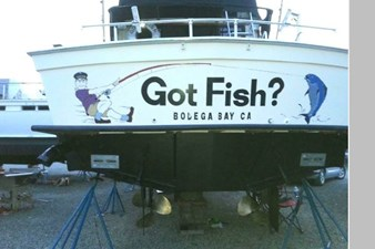Got Fish 2
