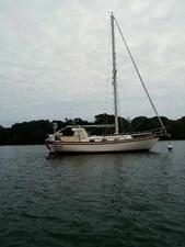 Freebird 3 3 anchored