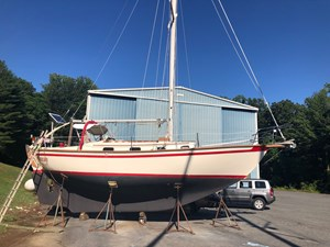 Freebird 4 4 Hull