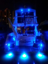 The Polar Express 81 2