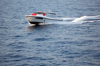 Quer 42 XL 11 YF-AXIOMA-GG5A9536