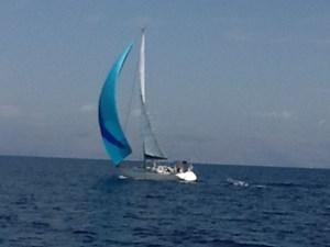 MONCHU 39 sweden-yachts-45-40