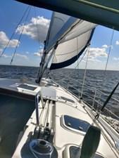 Betting on Wind 25