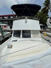 White Pearl 49 IMG_6212