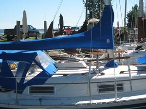 Blue Pearl 4 2012 030