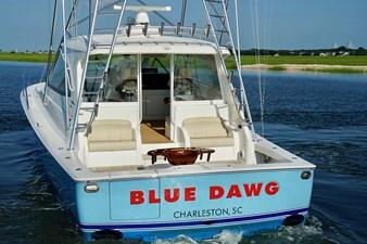 Blue Dawg 9