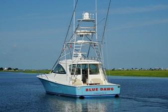 Blue Dawg 47 DSC09979