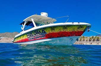 2020 Boston Whaler 280 Vantage @ Kino Sonora 3 2020 Boston Whaler 280 Vantage @ Kino Sonora 2020 BOSTON WHALER 280 Vantage Sport Fisherman Yacht MLS #273371 3