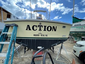 Action 5 IMG_7023