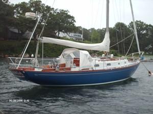 Kanga 62589